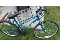 Ladies/Girls Mountain Bike - MAGNA ECHO-RIDGE VGC £25.00