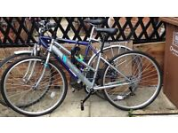 Women's Town Bicycle - £100 ONO
