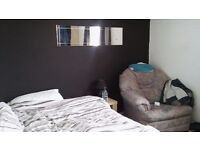 Lovely clean modern room to rent