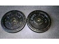 2 x 7.5kg Bodybild Cast Iron Weight Plates