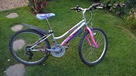 Girls Bicycle Falcon Castaway Mountain bike