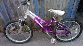 GIRLS - BOYS BIKE Raleigh Fantastic Shimano equipped running Gear 6 speed Twist change