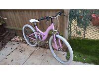Dyno Pink Lady Mountain Bike, rare bike.