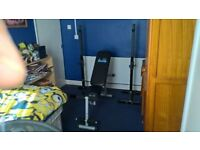 Carl Lewis Dumbell Bench With Heavy Duty Squat Stands
