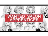 HAIRDRESSING APPRENTICE