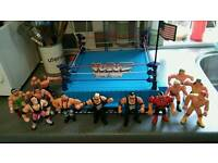 Wwf hasbro figures and ring wcw galoobs