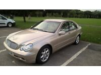 Mercedes Benz C Class Elegance 220 Diesel Automatic in Gold, A beautiful, economical, luxury saloon