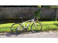 "dawes sprint 29"" road bike"