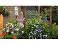 Gardening and landscaping services,competitive rates and reliable. No job too small.