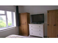 Large room with double bed in comfortable house £105pw including bills