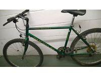 Shogun bike and other bikes