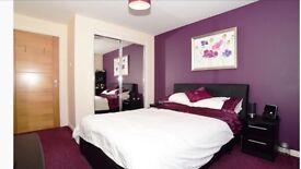 Luxury 2 bedroom ground floor apartment to rent in Arbroath