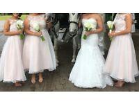 Selling size 12 fishtail lace wedding dress, 3 blush pink bridesmaid dresses sizes 6, 8, 18