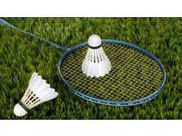 Badminton partner wanted