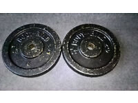 2 x 7.5kg Body Bild Cast Iron Weight Plates