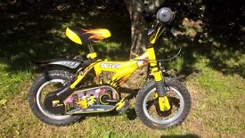 12 inch Raleigh MX12