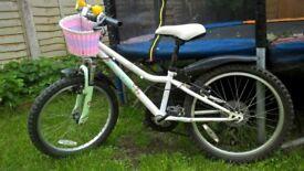 "Girls Bicycle 20"" Apollo"