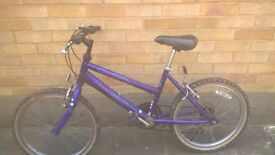 5 speed raleigh salsa girls bike with extra tyres