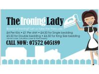 The Ironing Lady covering Dunvant, Sketty, Killay and Uplands, Swansea