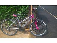 Mountain bike - 22 inch wheel