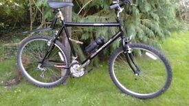 bsa westcoast 22 in frame,large frame,superb condition