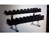 Life fitness two tier weights rack