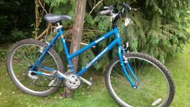 ladies bsa west coast 21 inch frame bicycle,nice condition