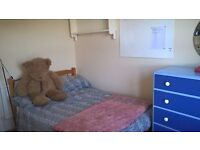 Nice single room available Ist Feb to end June in family home in Fiveways.