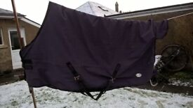 """Horse Rug Fal Pro Viking Heavyweight Outdoor Size 6' 3"""" Purple good condition cleaned and reproofed"""