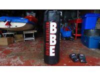 Britannia brand punchbag and gloves