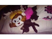 Black kitten. £50