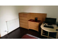 Room in a shared flat for rent £230 + bills