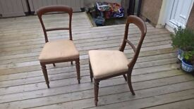 Pair of Antique Vintage Retro Chair Chairs Dining Lounge Bedroom