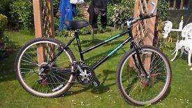 """Ladies 18"""" bicycle great working order"""
