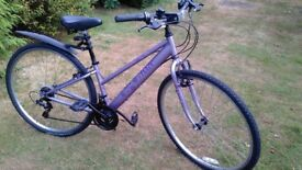 apollo haze ladies hybrid,14 in frame,recent schwalbe tyres,runs well