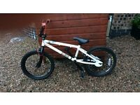 Boys 20' BMX bicycle