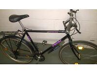 Trek Antelope Bike