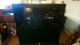 4' x 2' x 2' Black vivarium with cabinet