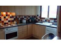 flat for rent Tain. Spacious 2 bedroom ground floor flat.