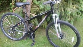apollo xc26x 21 speed 14 in frame,suit lady or gent immaculate