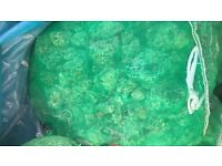 Un-used Pond Filter Material For Sale
