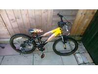 Boys Raleigh mountain bike