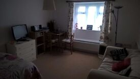 Spacious bed/sitting room to rent.
