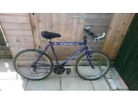 Man's apollo mountain bike