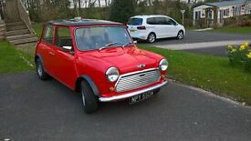 Classic mini,nut and bolt restoration ,tax exempt,excellent throughout.
