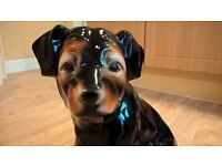 Large china rottweiler puppy ornament for sale