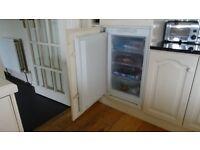 Built-in Baumatic freezer