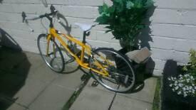 Apollo Tempo jnr road bike