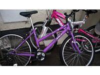 girls mountain bikes ranging in size