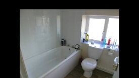 Large 2 bed flat for rent - Axminster - 585pcm